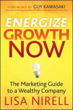 Nirell, Lisa - Energize Growth NOW: The Marketing Guide to a Wealthy Company, ebook