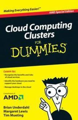 Underdahl, Brian - Cloud Computing Clusters For Dummies, AMD Special Edition, e-kirja