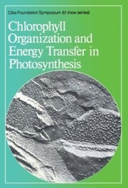 FitzSimons, David W. - Chlorophyll Organization and Energy Transfer in Photosynthesis, ebook