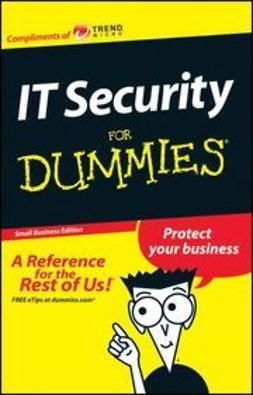 Trend, David - Small Business IT Security For Dummies<sup>&#174;</sup> in English, ebook