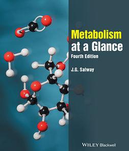 Salway, J. G. - Metabolism at a Glance, ebook