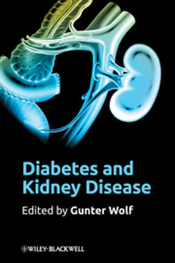 Wolf, Gunter - Diabetes and Kidney Disease, ebook