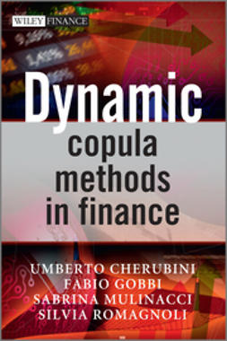 Cherubini, Umberto - Dynamic Copula Methods in Finance, ebook