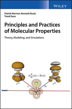 Norman, Patrick - Principles and Practices of Molecular Properties: Theory, Modeling, and Simulations, e-kirja