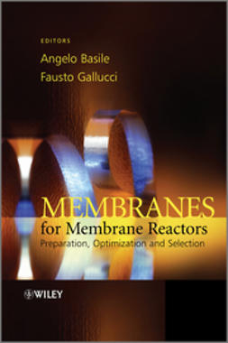 Basile, Angelo - Membranes for Membrane Reactors: Preparation, Optimization and Selection, e-kirja