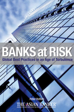 Hoflich, Peter - Banks at Risk: Global Best Practices in an Age of Turbulence, ebook
