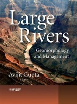 Gupta, Avijit - Large Rivers: Geomorphology and Management, ebook