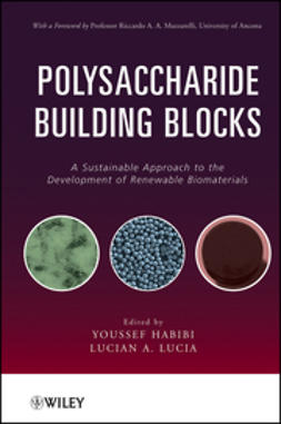 Habibi, Youssef - Polysaccharide Building Blocks: A Sustainable Approach to the Development of Renewable Biomaterials, ebook