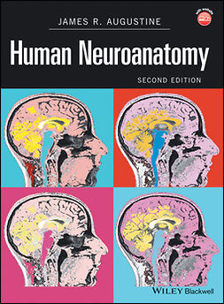 Augustine, James R. - Human Neuroanatomy, ebook