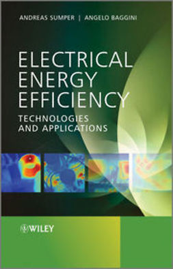 Baggini, Angelo - Electrical Energy Efficiency: Technologies and Applications, e-kirja