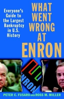 Fusaro, Peter C. - What Went Wrong at Enron: Everyone's Guide to the Largest Bankruptcy in U.S. History, ebook