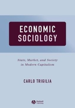 Trigilia, Carlo - Economic Sociology: State, Market, and Society in Modern Capitalism, e-kirja