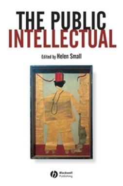 Small, Helen - The Public Intellectual, e-kirja