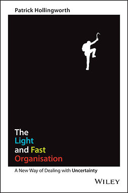 Hollingworth, Patrick - The Light and Fast Organisation: A New Way of Dealing with Uncertainty, ebook