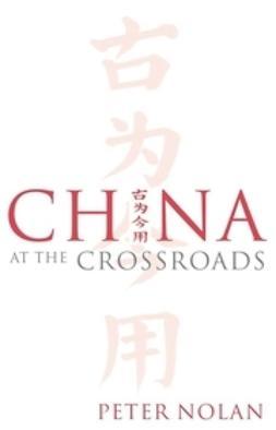 Nolan, Peter - China at the Crossroads, ebook