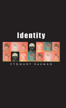Bauman, Zygmunt - Identity: Coversations With Benedetto Vecchi, e-bok