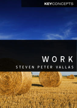 Vallas, Steven - Work: A Critique, ebook