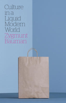 Bauman, Zygmunt - Culture in a Liquid Modern World, e-bok