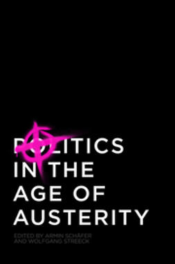 Schäfer, Armin - Politics in the Age of Austerity, e-bok