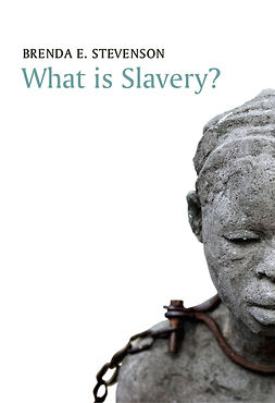 Stevenson, Brenda E. - What is Slavery?, ebook