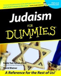 Falcon, Ted - Judaism For Dummies, e-bok