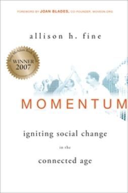 Fine, Allison - Momentum: Igniting Social Change in the Connected Age, ebook