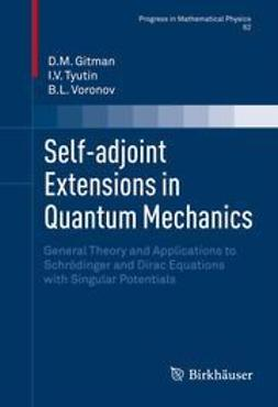 Gitman, D.M. - Self-adjoint Extensions in Quantum Mechanics, ebook