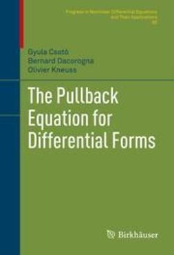 Csató, Gyula - The Pullback Equation for Differential Forms, ebook