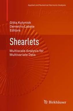 Kutyniok, Gitta - Shearlets, ebook