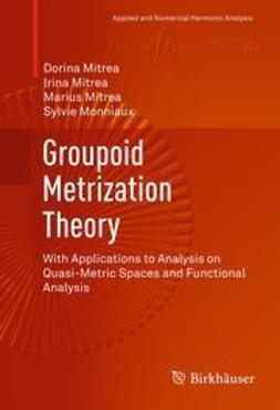 Mitrea, Dorina - Groupoid Metrization Theory, ebook