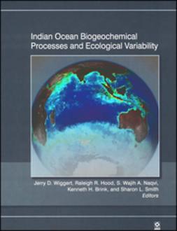 Brink, Kenneth H. - Indian Ocean Biogeochemical Processes and Ecological Variability, ebook