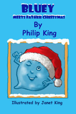 King, Philip - Bluey Meets Father Christmas, ebook