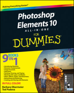 Obermeier, Barbara - PHTS All-in-One For Dummies, ebook