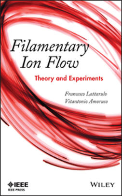 Amoruso, Vitantonio - Filamentary Ion Flow: Theory and Experiments, ebook