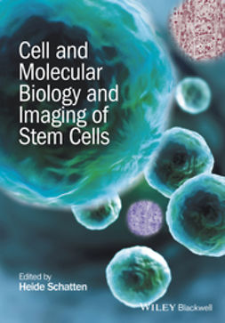 Schatten, Heide - Cell and Molecular Biology and Imaging of Stem Cells, ebook