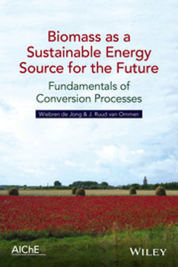 Jong, Wiebren de - Biomass as a Sustainable Energy Source for the Future: Fundamentals of Conversion Processes, ebook