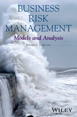 Anderson, Edward J. - Business Risk Management: Models and Analysis, e-kirja