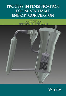Annaland, Martin van Sint - Process Intensification for Sustainable Energy Conversion, e-bok