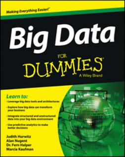 Hurwitz, Judith - Big Data For Dummies, e-kirja