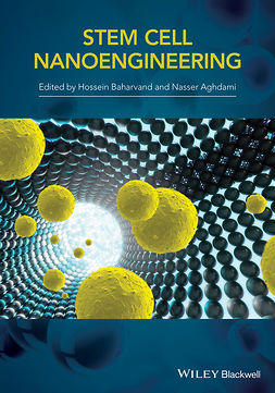 Baharvand, H. - Stem Cell Nanoengineering, ebook