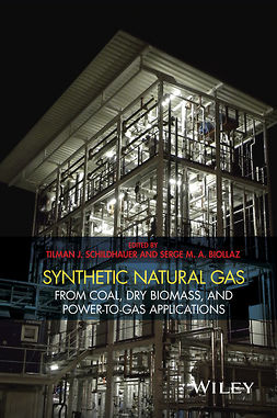 Biollaz, Serge - Synthetic Natural Gas: From Coal, Dry Biomass, and Power-to-Gas Applications, ebook