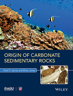 James, Noel P. - Origin of Carbonate Sedimentary Rocks, e-bok