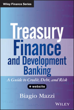 Mazzi, Biagio - Treasury Finance and Development Banking, + Website: A Guide to Credit, Debt, and Risk, ebook