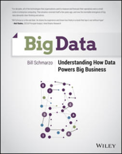 Schmarzo, Bill - Big Data: Understanding How Data Powers Big Business, e-bok