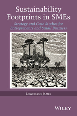 James, Lowellyne - Sustainability Footprints in SMEs: Strategy and Case Studies for Entrepreneurs and Small Business, e-kirja