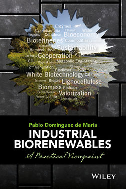 María, Pablo Domínguez de - Industrial Biorenewables: A Practical Viewpoint, ebook