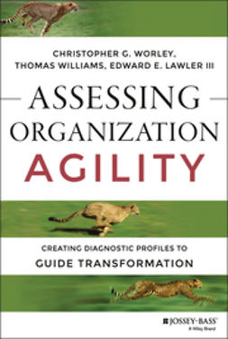 Lawler, Edward E. - Assessing Organization Agility: Creating Diagnostic Profiles to Guide Transformation, e-bok