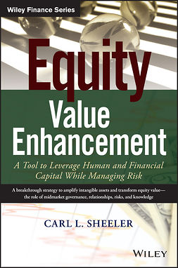 Sheeler, Carl L. - Equity Value Enhancement: A Tool to Leverage Human and Financial Capital While Managing Risk, e-kirja
