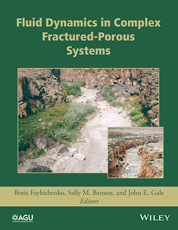 Benson, Sally M. - Fluid Dynamics in Complex Fractured-Porous Systems, e-bok