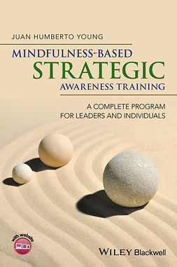 Young, Juan Humberto - Mindfulness-Based Strategic Awareness Training: A Complete Program for Leaders and Individuals, e-kirja